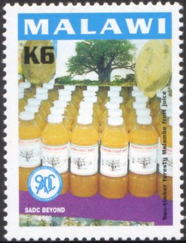 Malawi2000