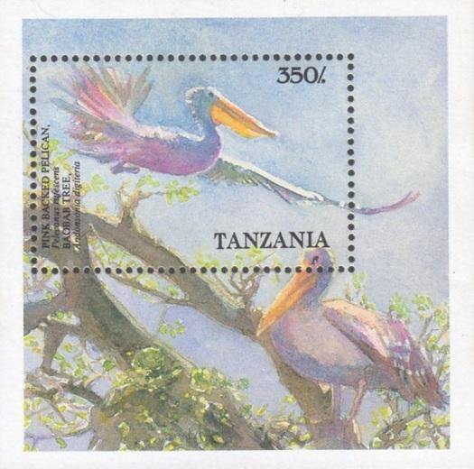 Tanzania1989s