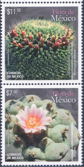 Mexico2015s