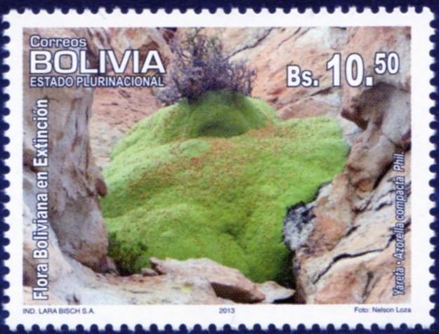 Yaretabolivia