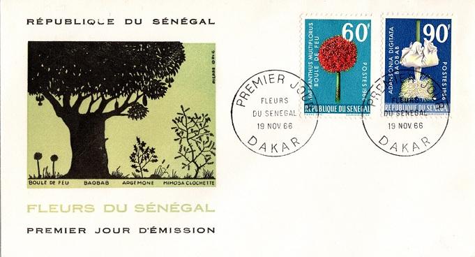 Senegal1966baobabfdc