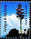 Aantigua20073