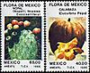 Mexico1986s