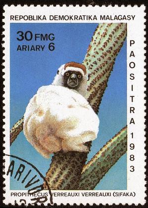 Madagascar1983s