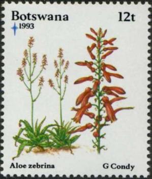 Aabotswana19931