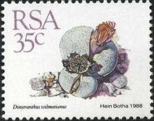 Rsa35