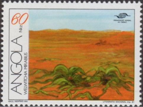 Angola1991